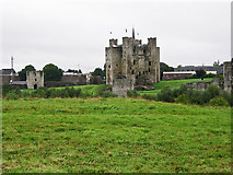 N8056 : Castles of Leinster: Trim, Meath (1) by Garry Dickinson