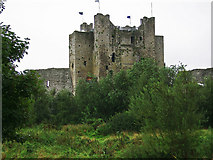 N8056 : Castles of Leinster: Trim, Meath (2) by Garry Dickinson