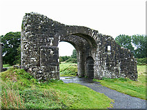 N8056 : Castles of Leinster: Trim, Meath (3) by Garry Dickinson