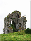 S1971 : Castles of Munster: Tullow, Tipperary (1) by Garry Dickinson