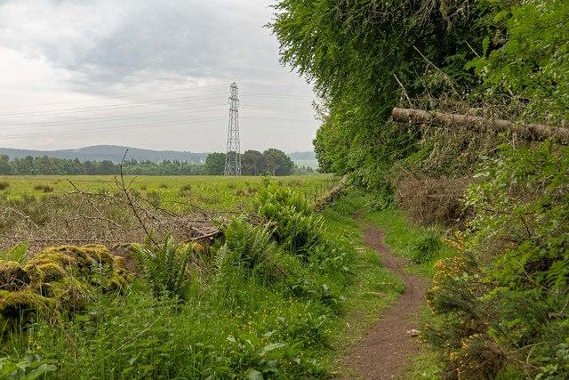 Old estate track to Holme Rose by valenta