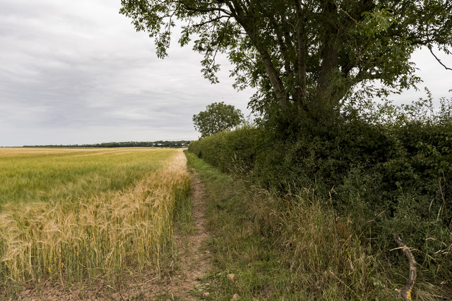 Public Bridleway near Grove Moor Farm