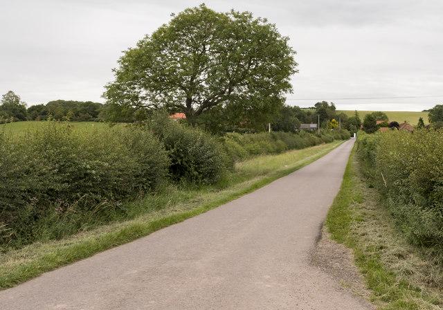 Lane to Little Gringley