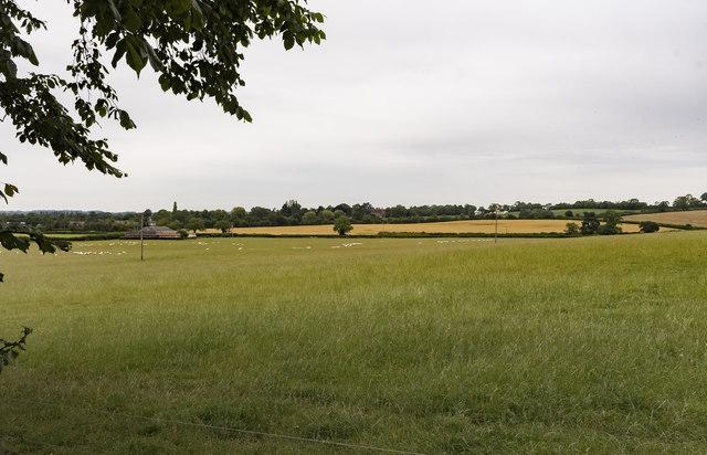 Fields near Little Gringley