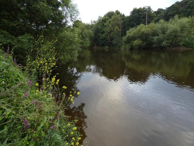 River Severn near Bewdley