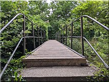 TQ5571 : Darent Valley Path - footbridge across River Darent by Paul Williams