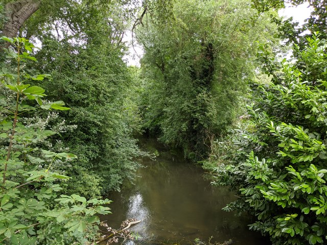 River Darent viewed from footbridge on Darent Valley Path