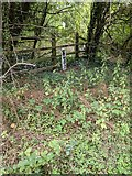 TQ5571 : Esso pipeline marker next to Darent Valley Path by Paul Williams