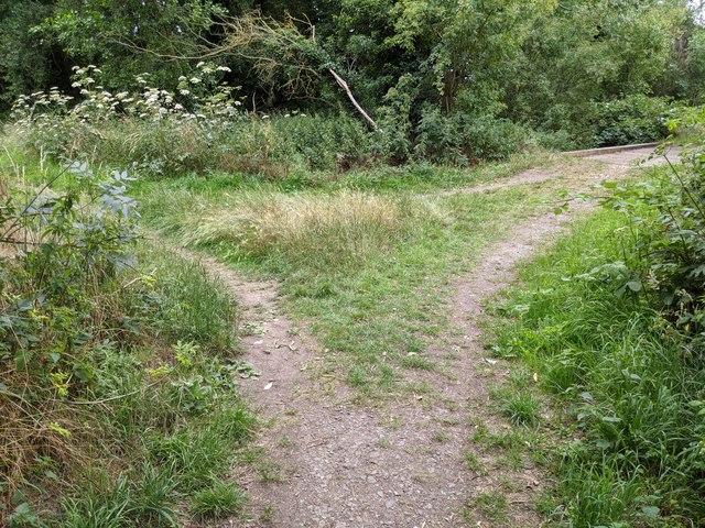 Junction between paths