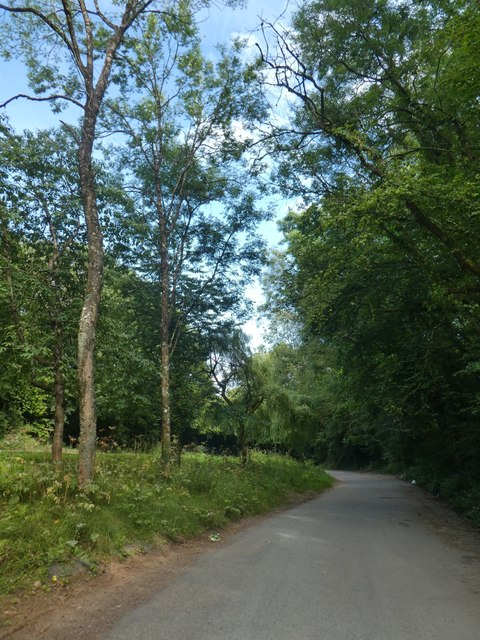 Lay-by off A3052 near Bowd
