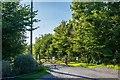 ST3968 : Entrance to Riverside Farm, Kingston Seymour by Oliver Mills