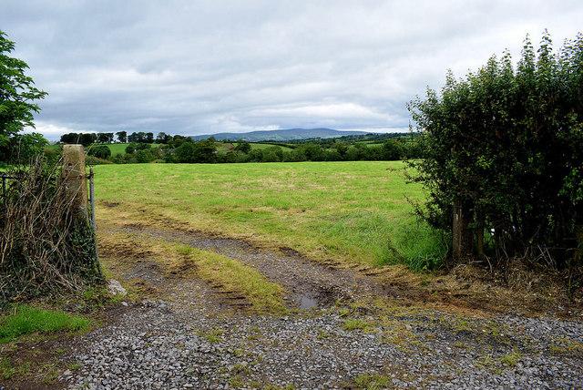 An open field, Beragh