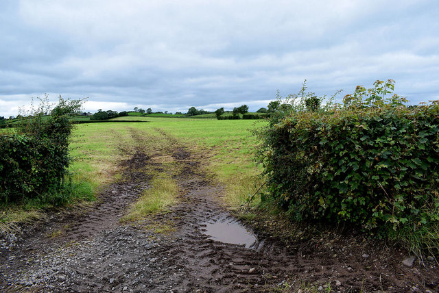 Muddy entrance to field, Beragh