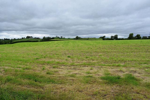 Large green field, Beragh