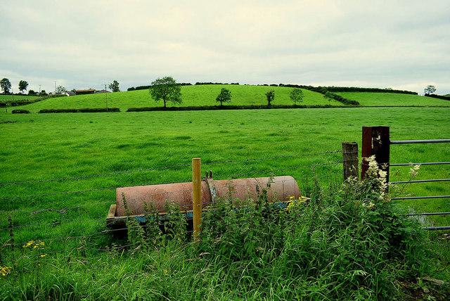 Roller in a field, Laragh