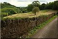 SX8359 : Field, Lower Longcombe by Derek Harper