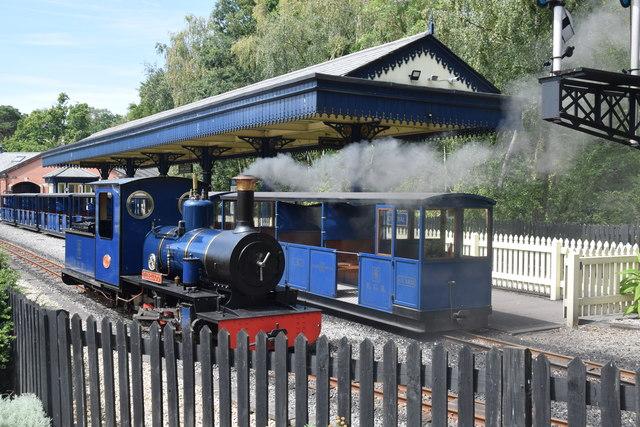 Miniature steam train  by Trevor Harris