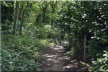 TQ5938 : Footpath off Forest Rd by N Chadwick