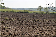 TQ5937 : Ploughed field by N Chadwick