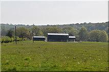 TQ5936 : Brook Farm by N Chadwick