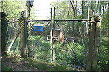 TQ5936 : Chase Wood Borehole by N Chadwick