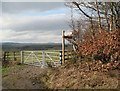NY1377 : Field Gate and Footpath Sign by Hungryhill Covert by Adrian Taylor