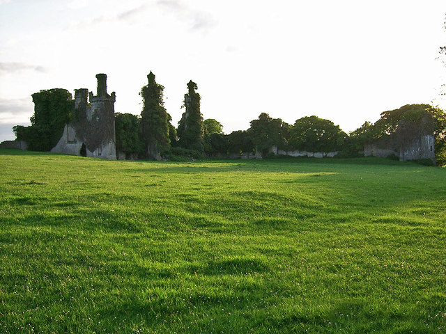 Thomastown Castle, Tipperary (3)