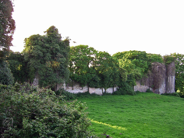 Thomastown Castle, Tipperary (4)