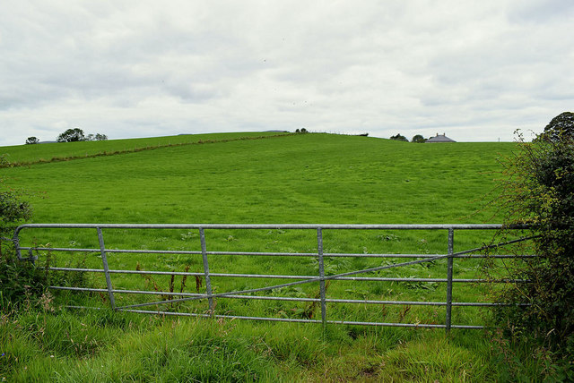 Gate and countryside, Tattraconnaghty