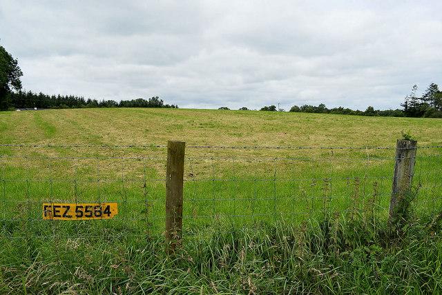 Number plate in fence along Gortnagarn Road, Mountjoy Forest West