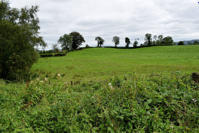 Mountjoy Forest West Division Townland