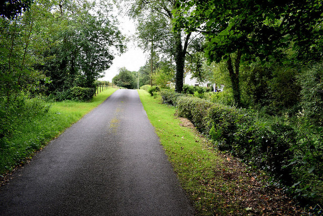 Shady along Connaghty Road