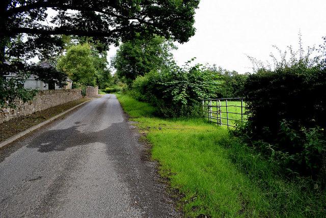 Rash Road, Mountjoy Forest West