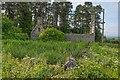 NH8650 : Ruin at Knockard by valenta