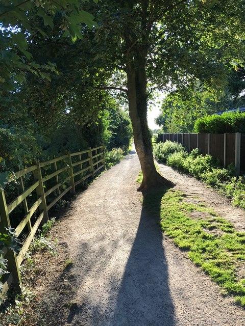 A path beside the Erewash