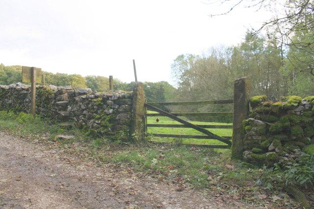 Field gateway on south side Thwaite Lane