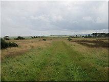 NZ7814 : Newton Mulgrave Moor by T  Eyre