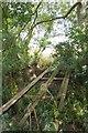 TL4433 : Old Bridge to Essex by Glyn Baker