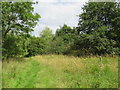 SP3625 : Public bridleway near Heythrop Park, near Chipping Norton by Malc McDonald
