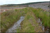 NJ0647 : Waterlogged Track by Anne Burgess