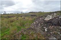 NJ0846 : Moorland near Loch Dallas by Anne Burgess