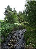 NJ1246 : River Lossie by Anne Burgess