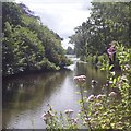 ST1880 : The north end of Roath Park Lake, Cardiff by Robin Drayton