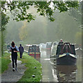 SJ6543 : Action by Audlem Locks No 14, Cheshire by Roger  Kidd
