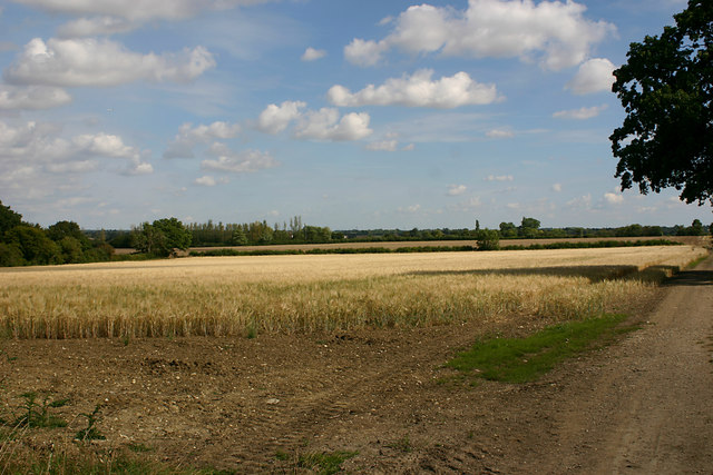 Open country east of Great Bardfield