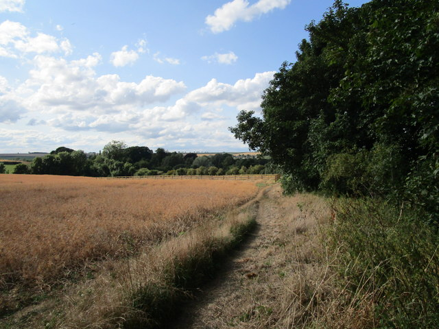 The Jurassic Way at Wakerley