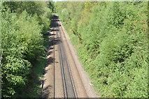 TQ5937 : The Hastings Line by N Chadwick