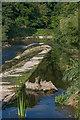 SO5174 : Mill Street Weir by Ian Capper