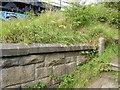 NZ1852 : Wing wall, Pea Road Railway Bridge by Adrian Taylor