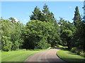 SP3725 : Heythrop Park driveway, near Enstone by Malc McDonald